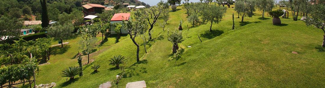 agriturismo sorrento aflopende tuin