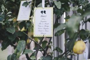 wedding sorrento -594_renamed_32742